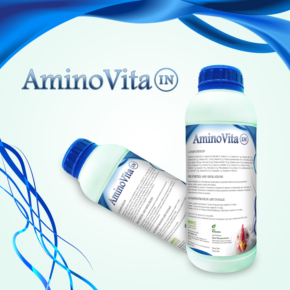 AminoVita IN Bottle