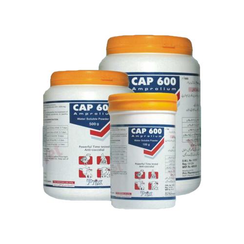 Cap 600