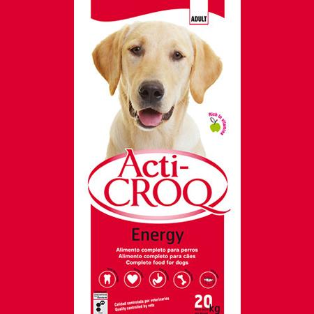 ACTI-CROQ-ENERGY